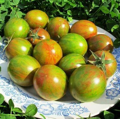 Помидоры Зелёный Шмель - Tomato Green Bumble Bee