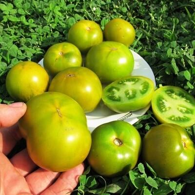 Помидоры Лайм Грин Салад - Lime Green Salad