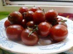 Помидоры Black Cherry — Блек Черри, Чёрные Черри
