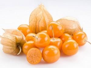 Семена физалиса перуанского