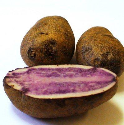 Картофель Vitelotte (Французский Трюфель) Синий  - (20 клубней)