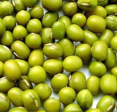 Зелёная Ультраскороспелая Овощная Соя -  Эдамамэ
