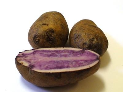 Семена Картофеля Vitelotte (Французский Трюфель) синий
