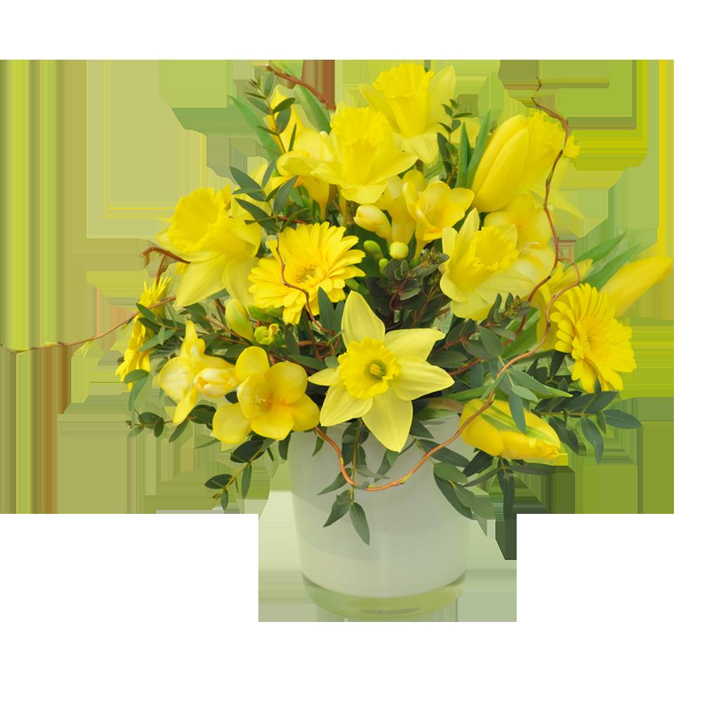Prvé jarné kvety