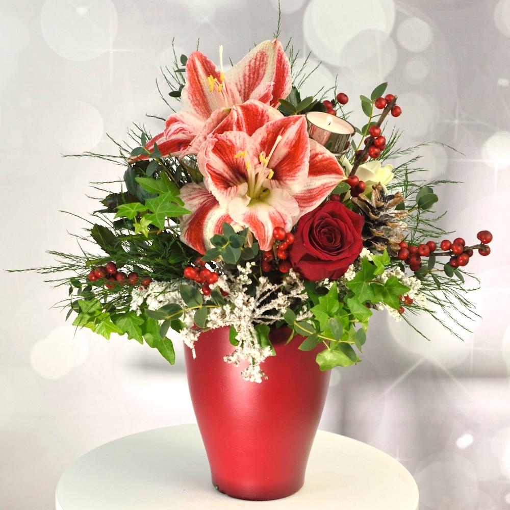 Červeno biely aranžmán s amarylisom