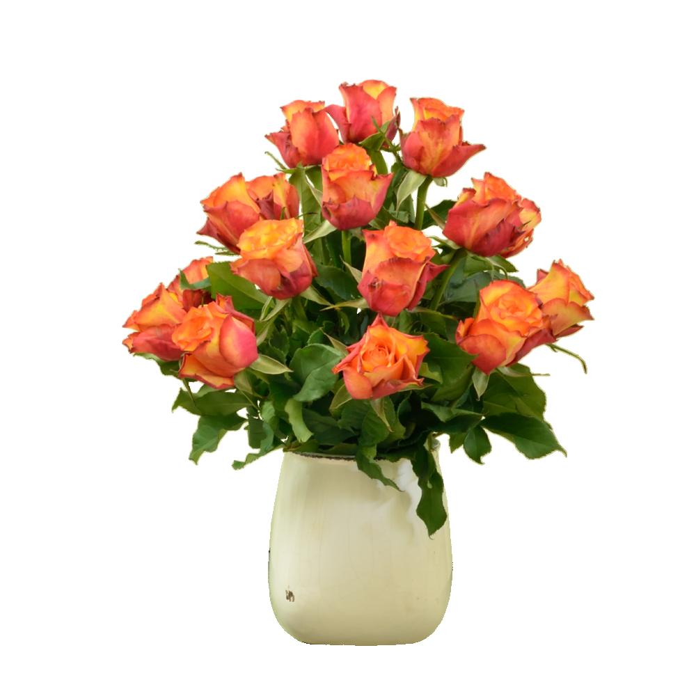 Červeno-oranžové ruže