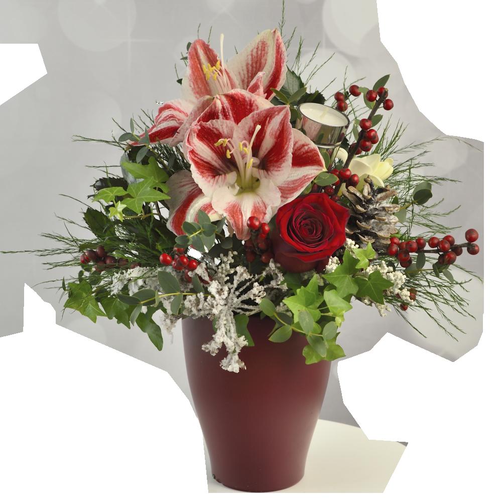 Červená kytica s amarylisom