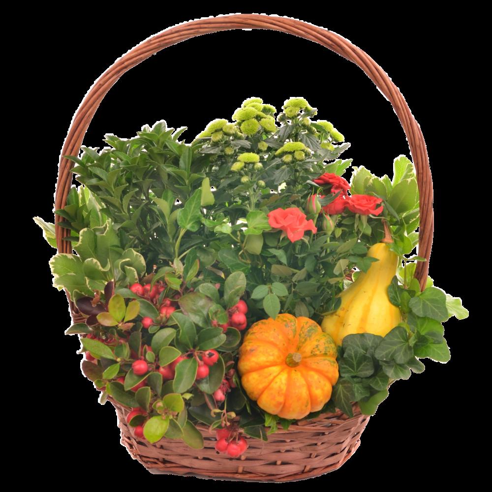 Jesenný košík s chryzantémou a tekvicami