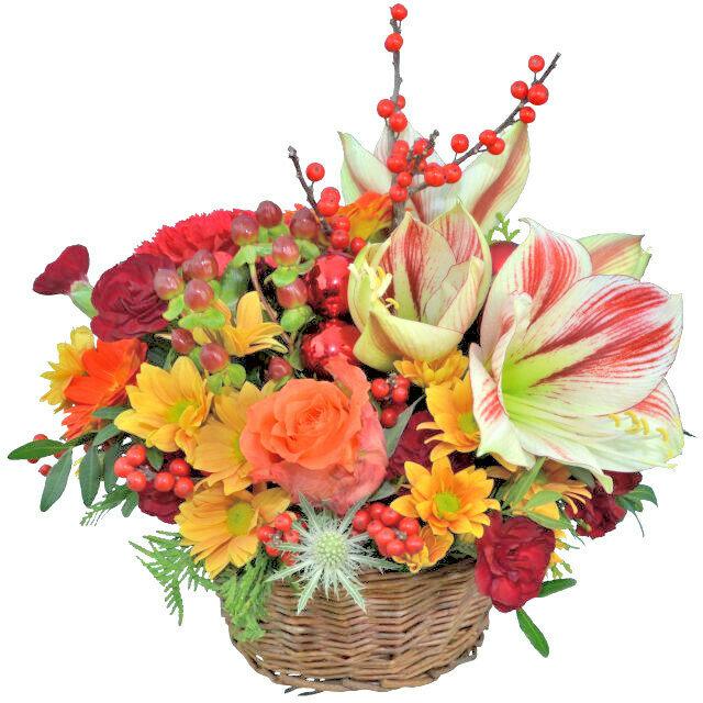 Kvetinový košík s amarylisom
