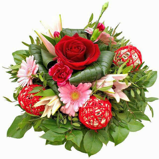 Červená ruža s ružovými kvetmi