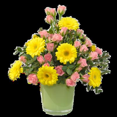 Slnečná kytica s ružovými ružami vo váze