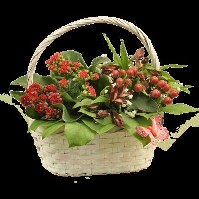Košík s červenými kvetmi