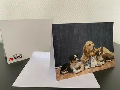 10 Karten mit Tier-Motiv inkl. Couvert