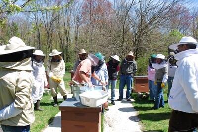 Beginner Beekeeping Class March 7, 2020