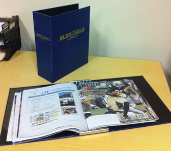 Blue & Gold Illustrated Binder