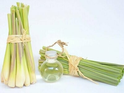 Lemongrass Essential Oil 50 ml