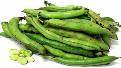 Sem (Broad Beans) 1 Kg [July-Oct]