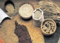 Chana/ Gram Flour 5 kgs
