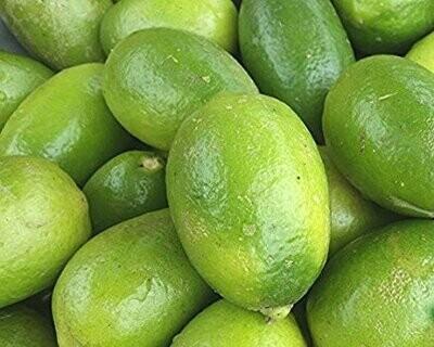 Natural kagzi lemon (3 Kgs) [Pre-Order. Delivery months: Feb/Sept]