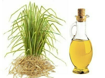 Vetiver 100% Pure Essential Oil  (15 ml)