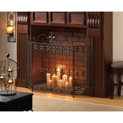 FRENCH REVIVAL FIREPLACE SCREEN by Accent Plus