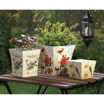 BOTANICAL GARDEN PLANTER TRIO SET by Summerfield Terrace