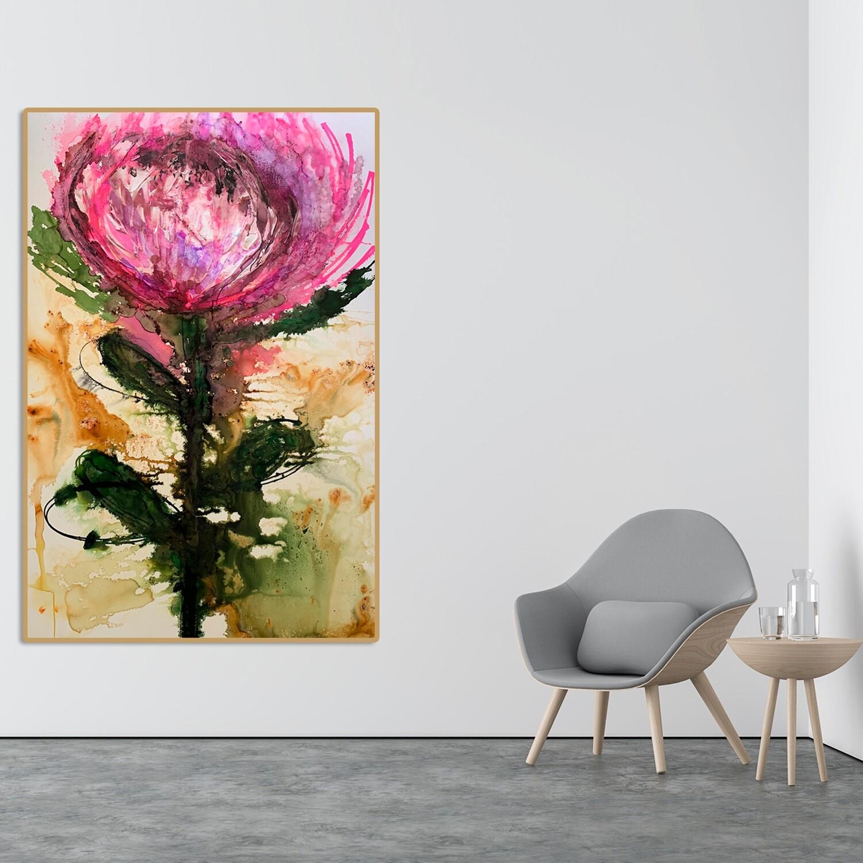 Protea 'Belle'