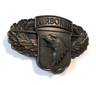 101st Airborne Division Air Assault!