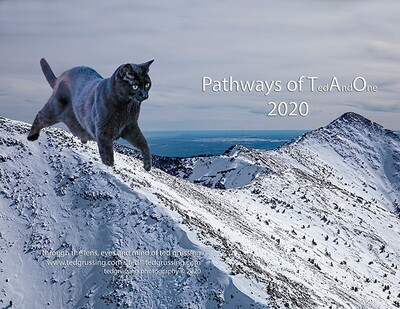 2020 Pathways of TaO calendar