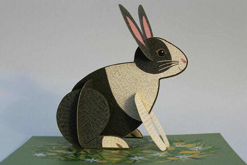 Pop Up Pets  - 3D Bunny  Card