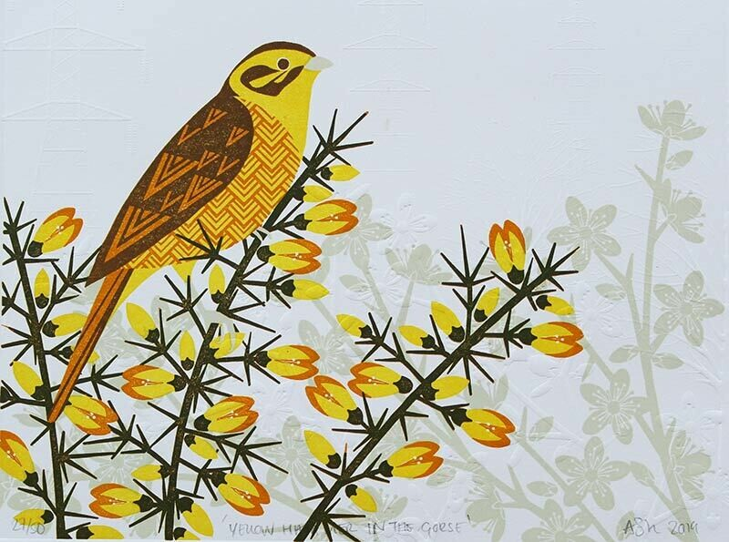 Yellowhammer in the Gorse