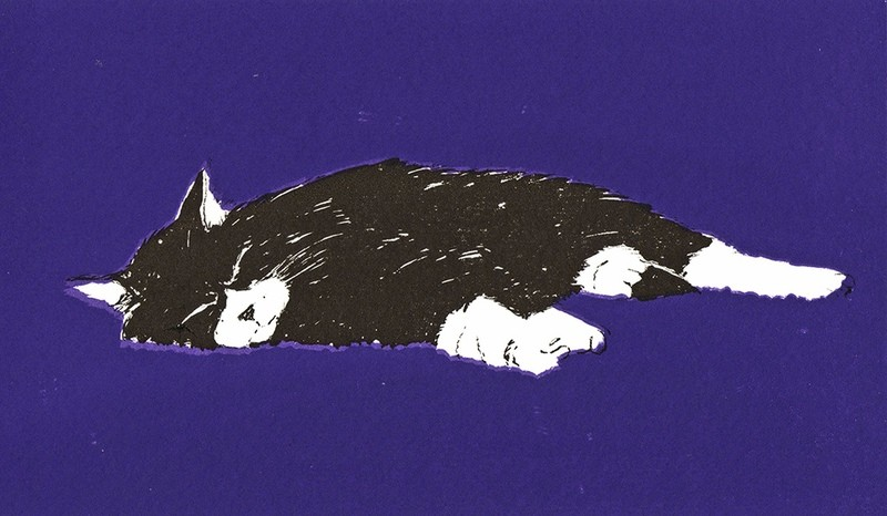 Sleeping Cat - Gallery Artists Card