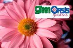 Green Oasis Gardens