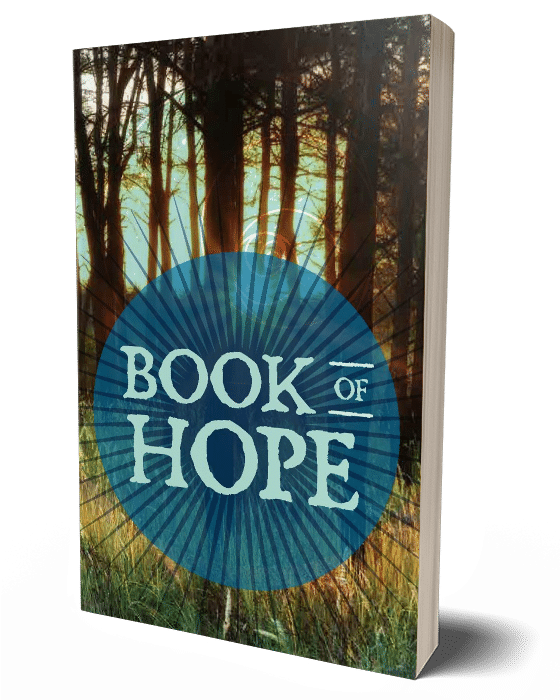 Teen Book of Hope - Case