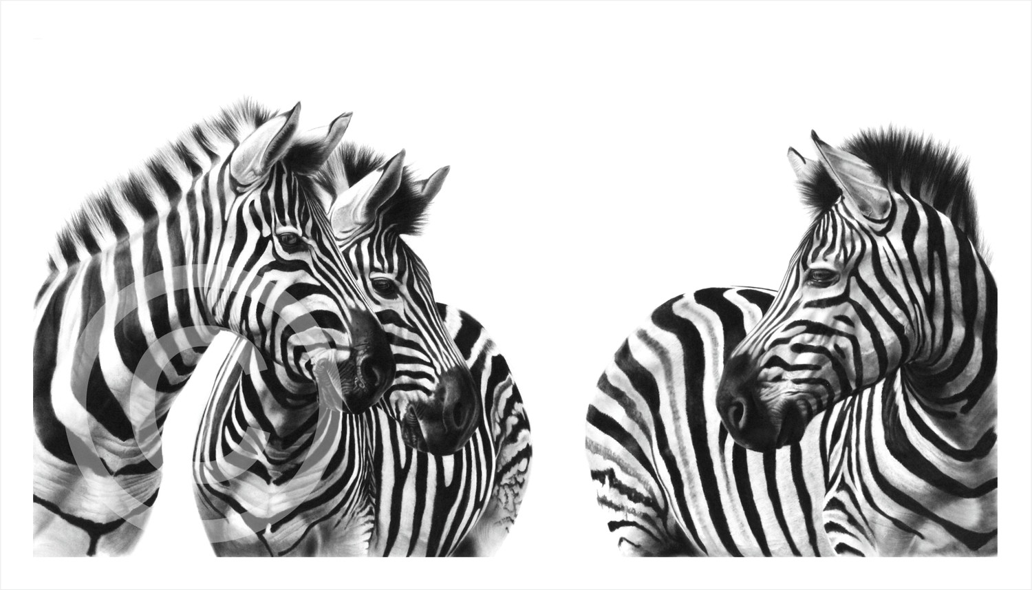 """Two's Company"" 594mmx x295mm large print on paper"