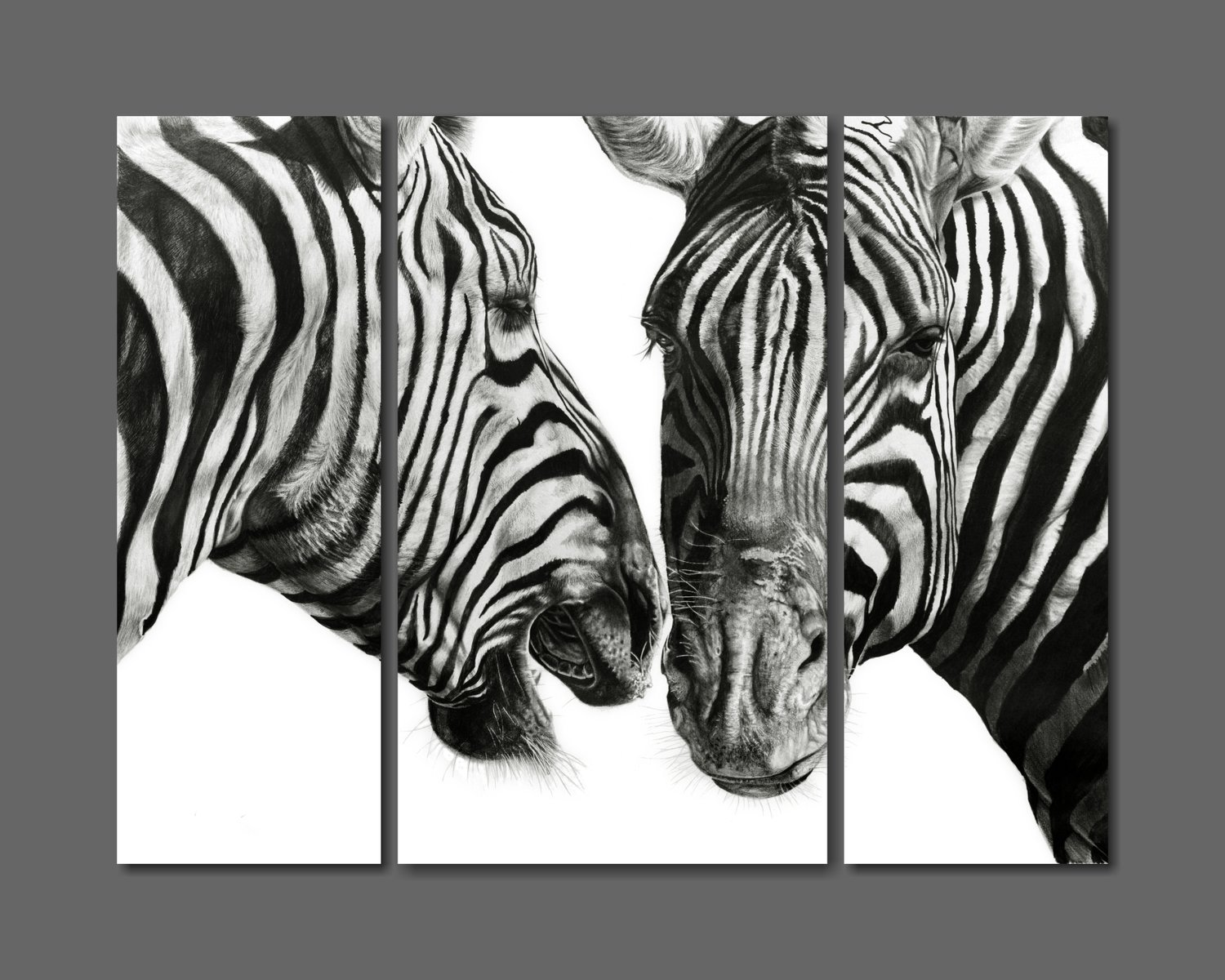 """Zebra Gossip"" 1180mm x 890mm composite print on canvass"