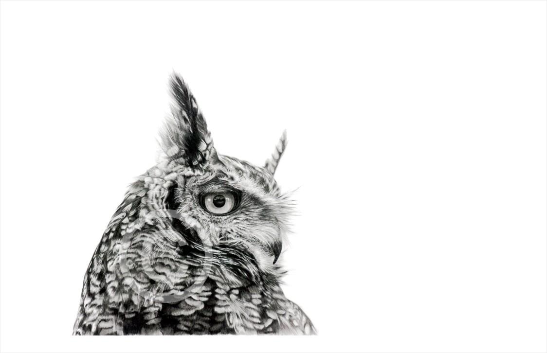 """""""Alpha"""" 420mmx x236mm medium print on paper"""