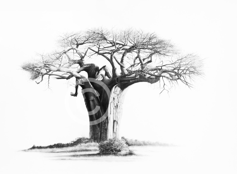 """""""Nkumbuleni"""" 297mm x 207mm small print on paper"""