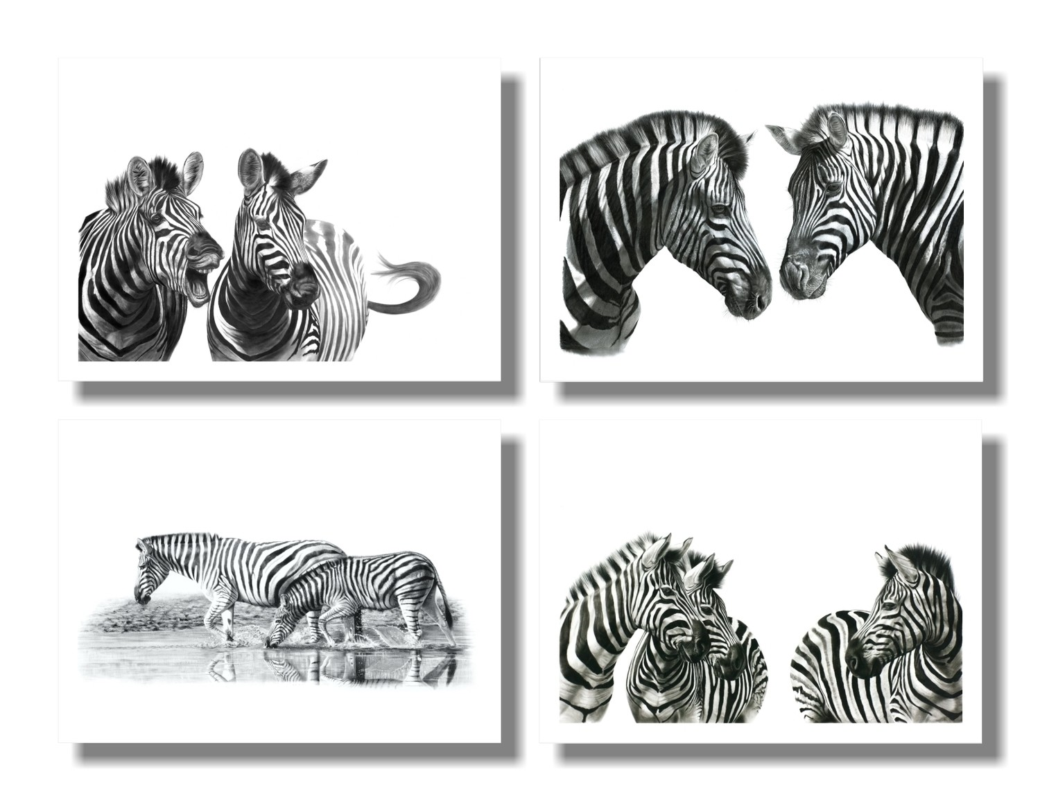 """Zebra"" set of 4 A5 prints on paper"