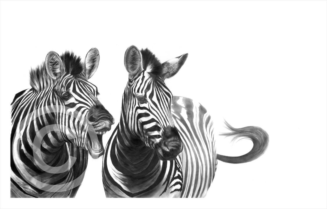 """Gift Horse"" 420mm x 252mm medium print on paper"