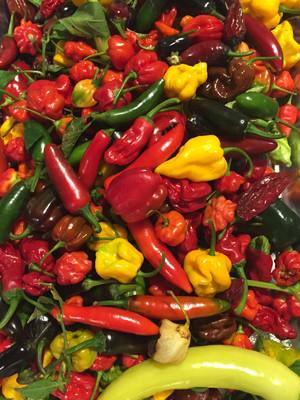 27 Pepper Extra Hot Sauce