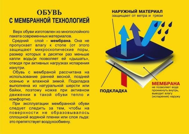 454941-42 Мембрана Котофей оптом, размеры 26-30