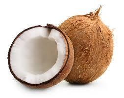Fresh Coconuts, Coconuts (Priced Each)