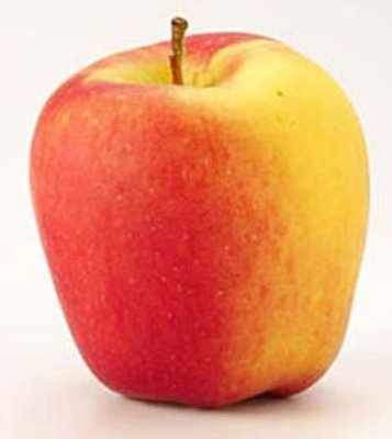 Fresh Apples, Large Ambrosia Apples (Priced Each)
