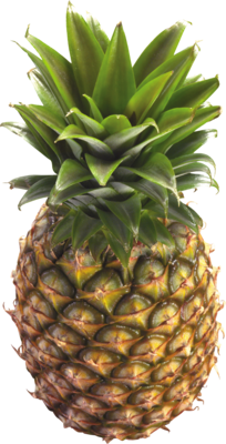 Fresh Pineapple, Organic Pineapple (Priced Each)