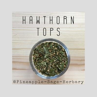 Hawthorn Tops - Organic: 50g