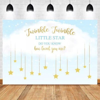 Gender Reveal Photo Backdrop Twinkle Twinkle Little Star Baby Shower Backdrops Newborn Baby Birthday Photography Background
