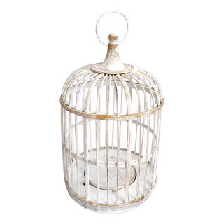 Tweetie Birdcage White Wash