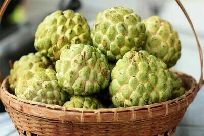 Custard Apple ( 1 kg )