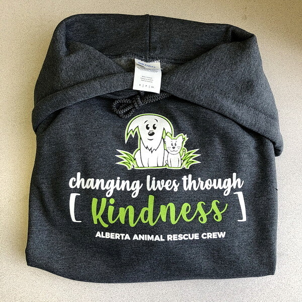 Hoodie - Changing Lives